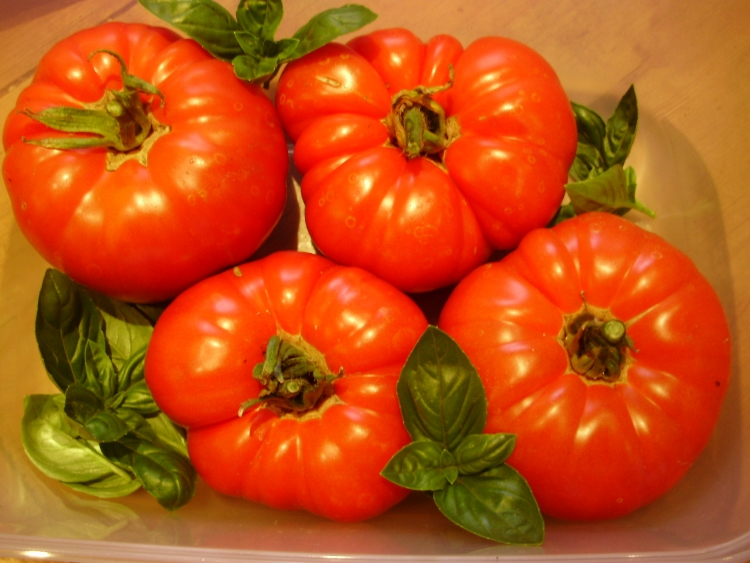 Pantano Romanesco - the best beefsteak tomato for a delicious Caprese salad.
